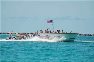 Free Dolphin Cruise or ride on Seablaster