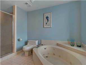 Master Tub and Seperate Shower