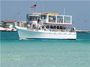Free Adult Ticket on a Dolphin Cruise