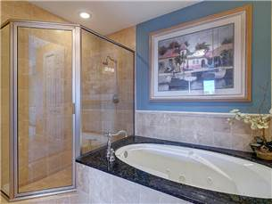 Master bath with walk in shower and jacuzzi tub