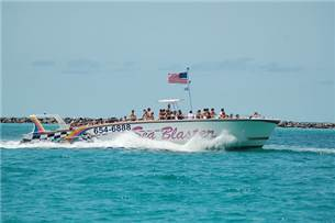 Free Dolphin Cruise or Seablaster Ride