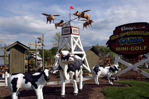Passport to Paradise Ripley's Old MacDonald's Farm Mini–Golf. Enjoy one adult admission per unit, per night's stay. No reservations required. Non-cumulative and nontransferable. Available year-round.