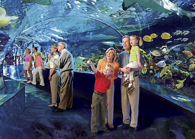 Passport to Paradise Ripley's Aquarium of the Smokies. Enjoy one adult admission per unit, per night's stay. No reservations required. Non-cumulative and nontransferable. Available year-round.