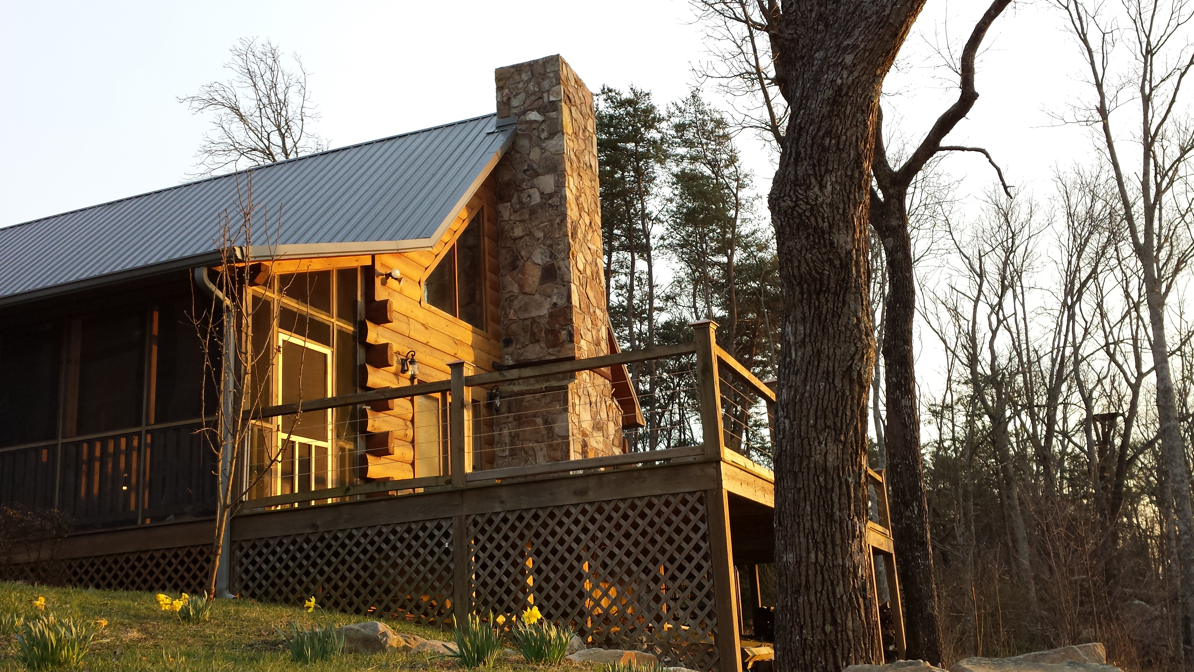 cabin pet in pigeon chattanooga rent forge rentals friendly gatlinburg great cabins mountains smoky tennessee for