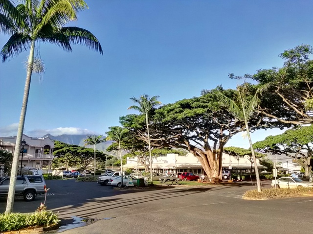 Haleiwa is a beautiful small town on the North Shore with shopping, restaurants, and recreation rentals.