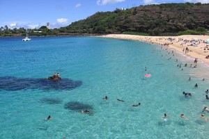 Snorkeling and swimming on the North Shore is wonderful and there are many places to choose from.