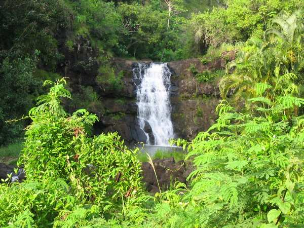 Waimea Falls, which is nearby, offers a scenic, relaxed nature walk in addition to the many hiking trails and beach walks on the North Shore.