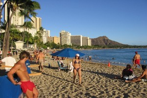 Waikiki Beach is steps away where you can take Catamaran rides, see the Waikiki Aquarium, the Zoo, go surfing, kayaking, stand-up paddle boarding, take outrigger rides, see hula shows, and there's always something going on!  Come and Enjoy.  Aloha!