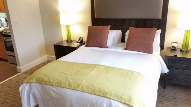 Our studios have a Queen size bed and full kitchen
