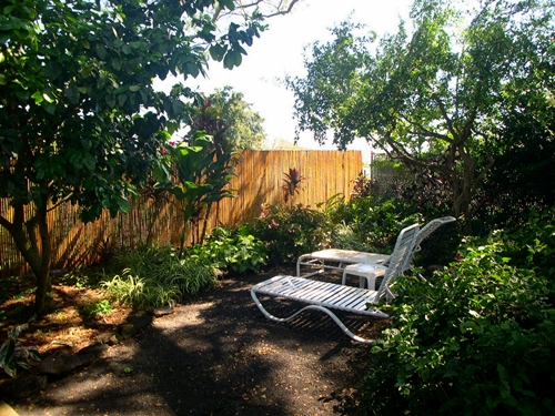 In the large secluded back yard is a private spot for sunning, reading and napping under the grapefruit tree.