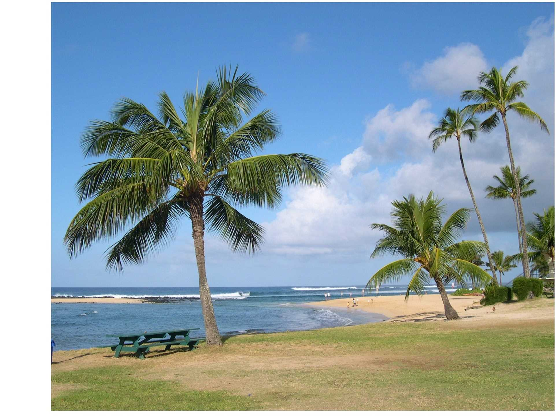 Poipu beach, great swimming, snorkeling, and surfing all year round.