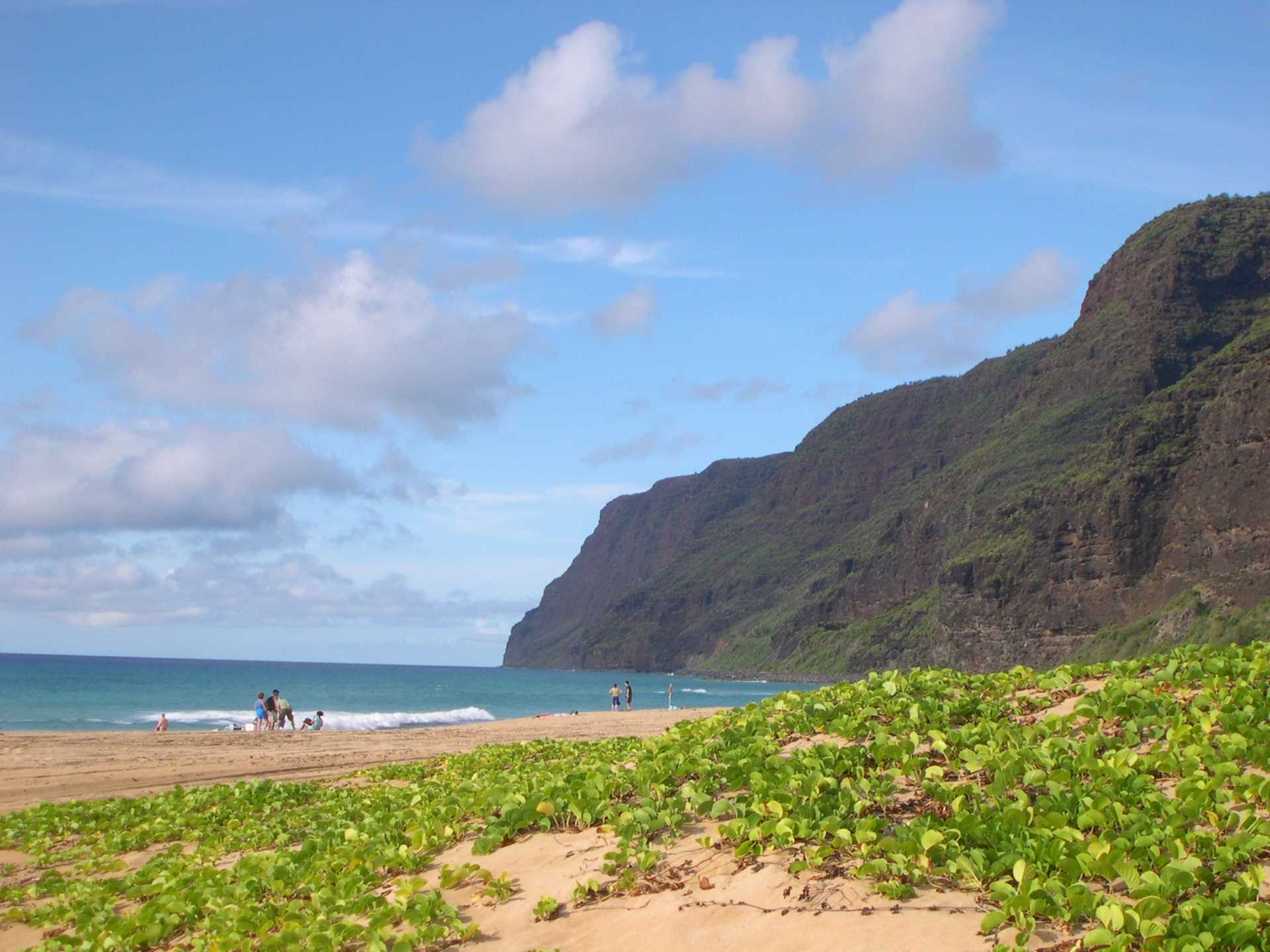 Polihale beach at end of road on West side