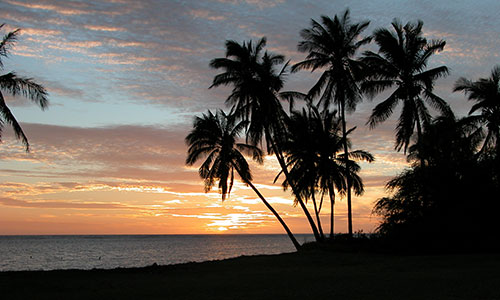 Sunset at coconut grove in Kaunakakai