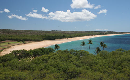 Papohaku Beach view 2