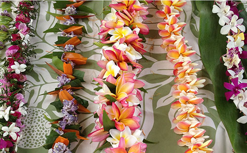 A variety of flowers are used for lei making