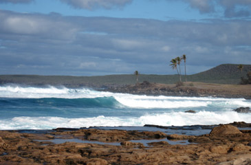Big Swells in the winter months