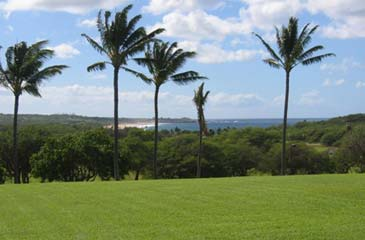 Ocean and Papohaku Beach View from Living room and bedroom