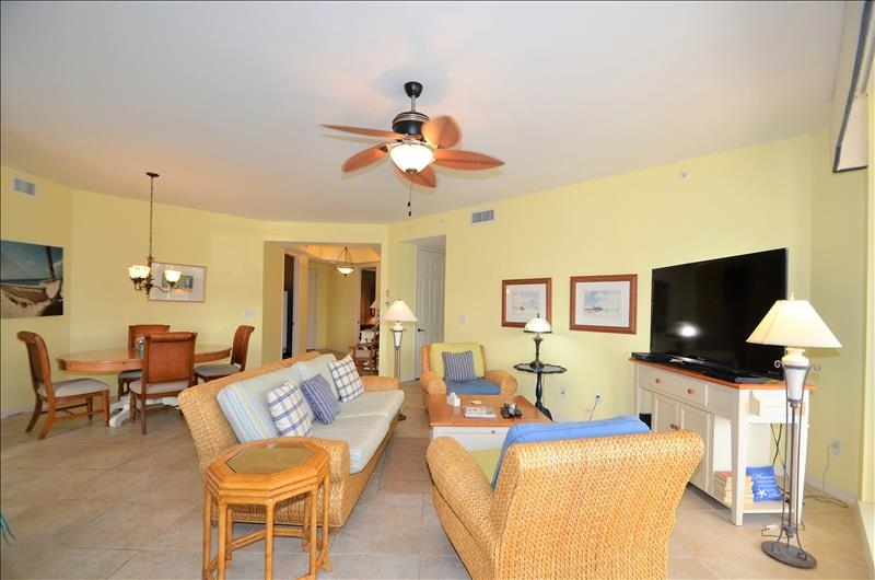 Living /Dining Rooms