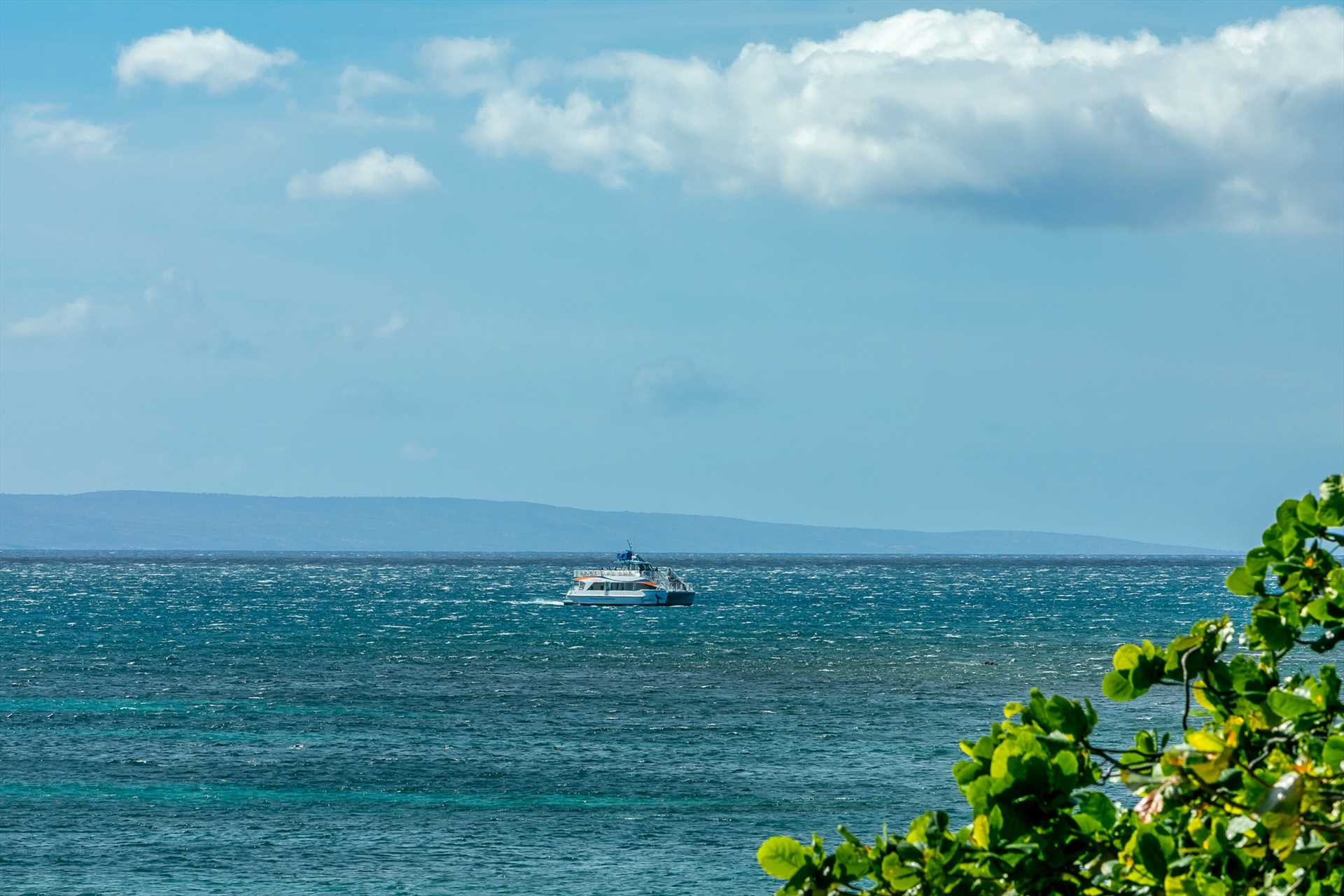 Epic views of Maalaea Bay. Daily sunsets. Watch the whales play in the bay November thru May.