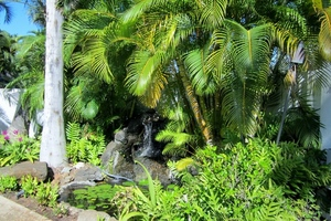Tropical landscaping with fountain