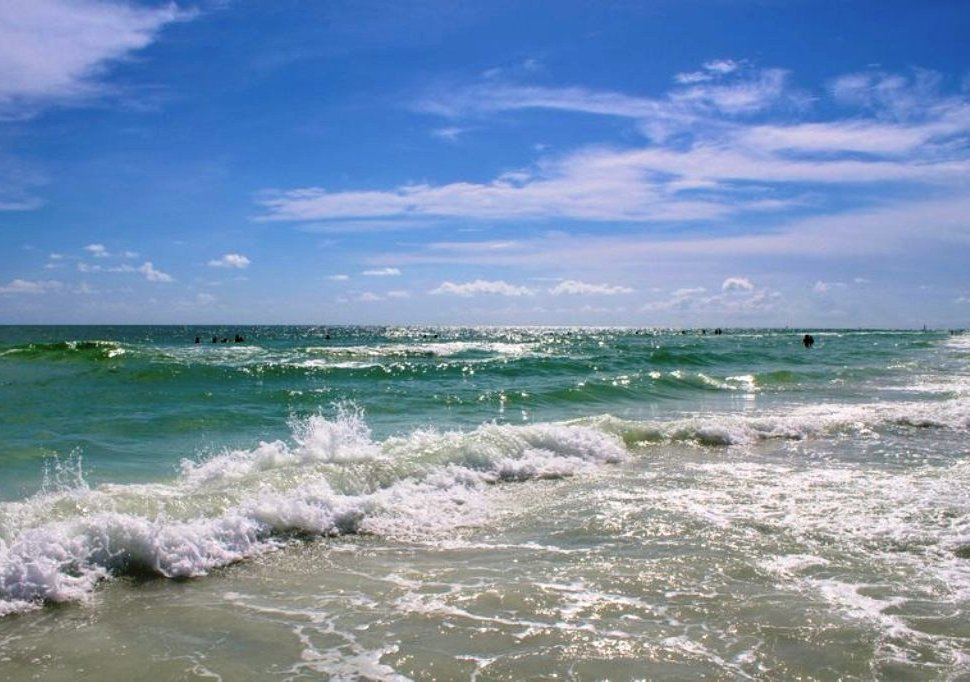 Siesta Key Beach is Rated One of the World's Best!