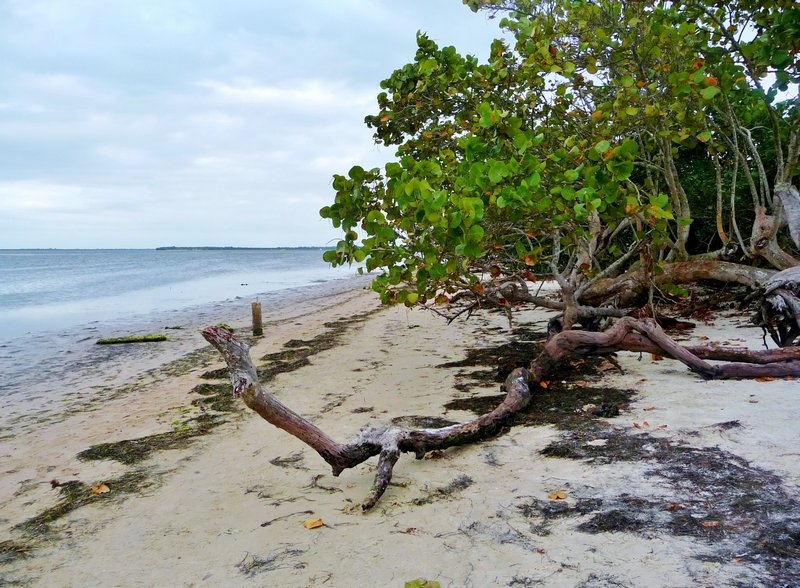 Ft. DeSoto Nat'l. Monument Beach and Trails