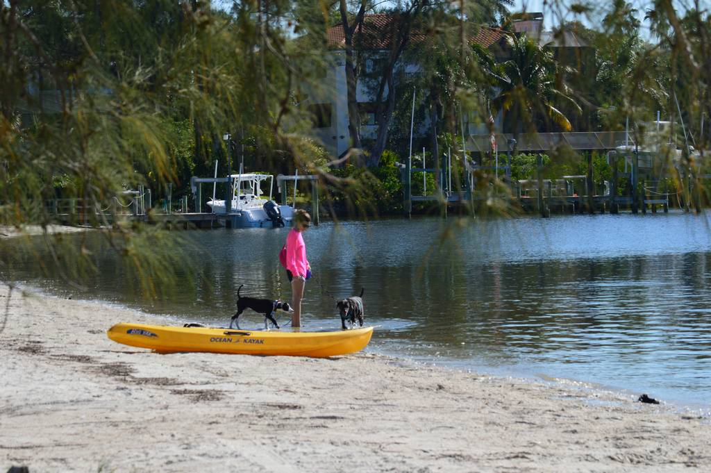 Kayak the Bay with your Best Friend