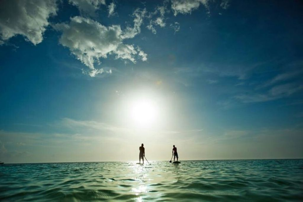 Paddle Boards are a Great Way to Enjoy the Gulf.