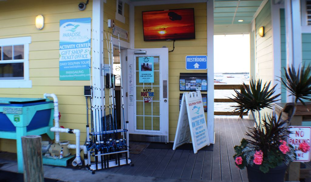 Charter a Dolphin/Fishing or Sunset Tour at the Pier