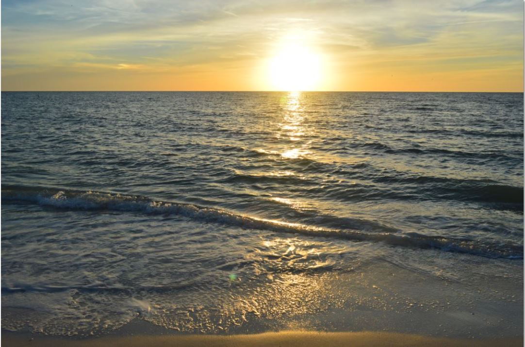 Or Stroll the Shoreline with a Loved One