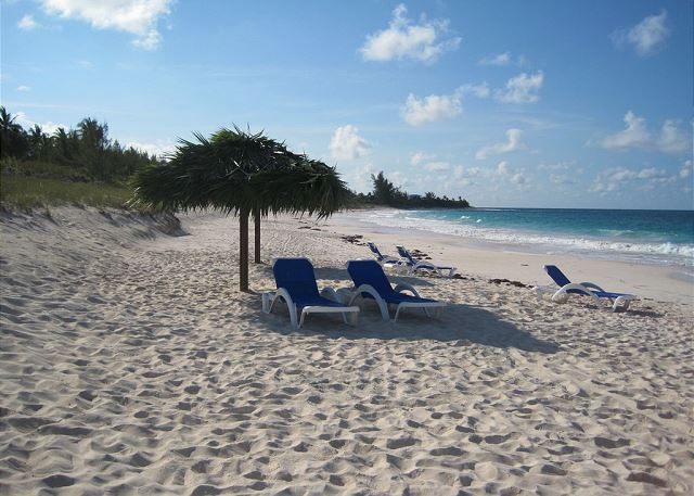 Beach Facing North, showing chairs and palapas for Shade