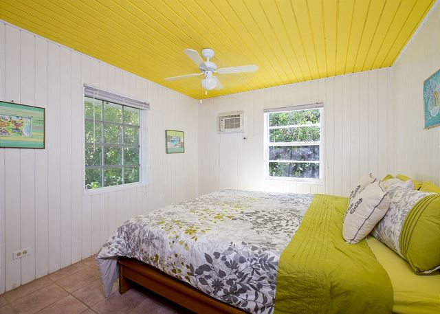Master Bedroom King Bed and A/C