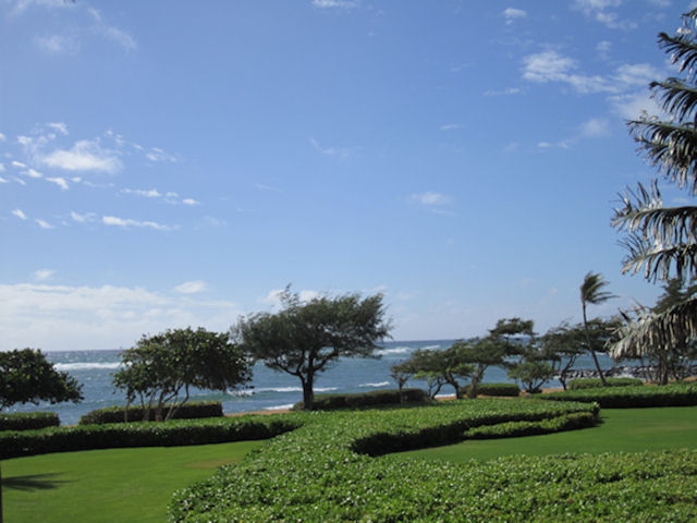 Lanai View of Preserve