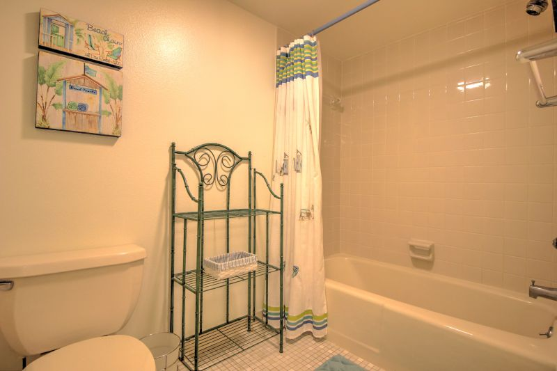Master bathroom shower and tub.