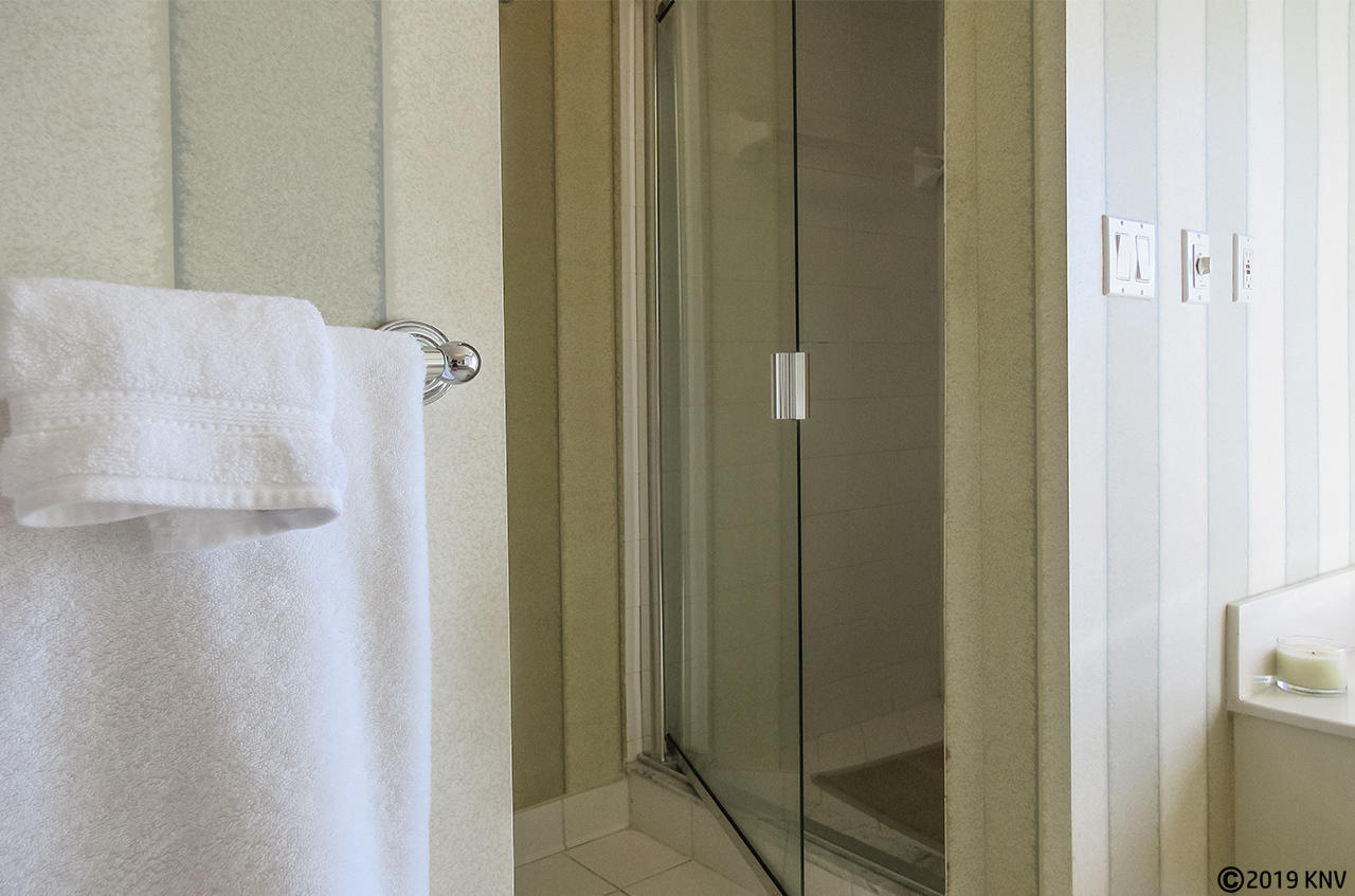 Separate Shower at Master Bath