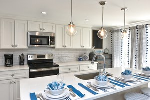 Plenty of counter space for family meals