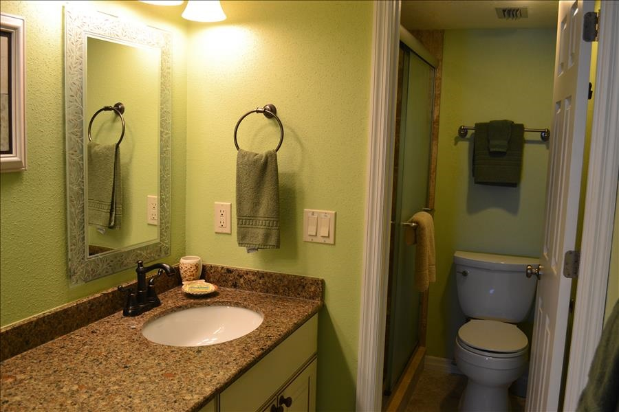 Master Bathroom4