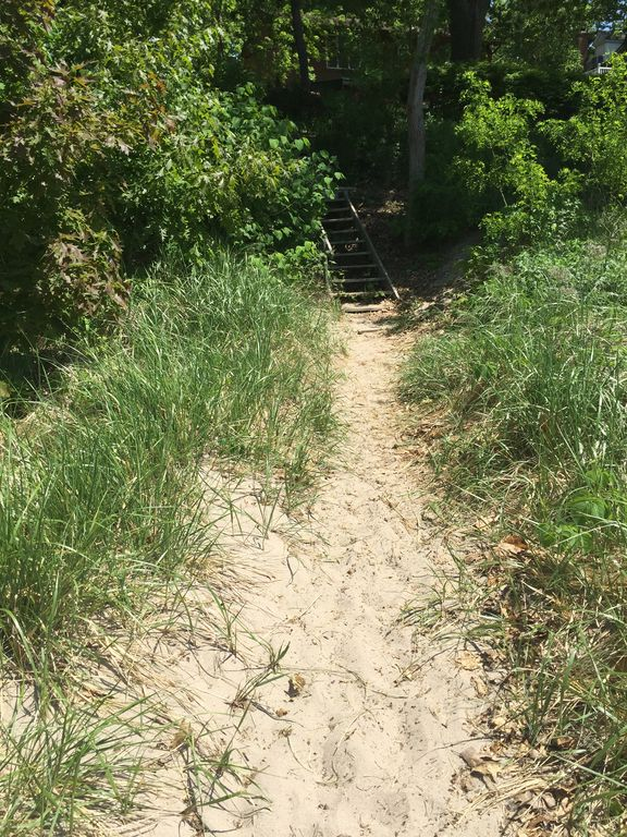 This is a closer view of the path that leads back to the house from the beach.