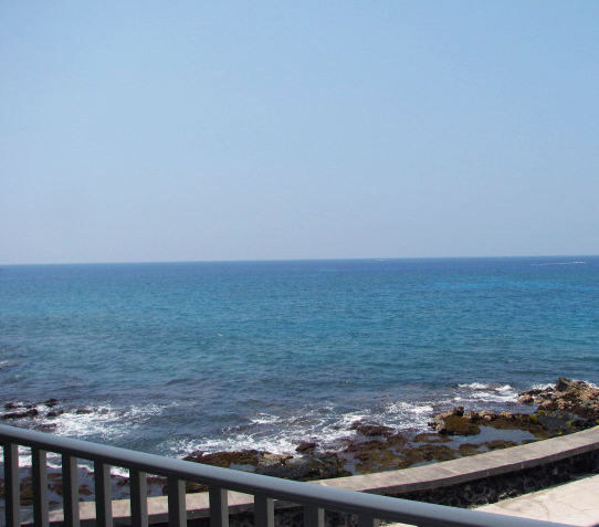 Oceanfront lanai - view the tidal pools where the turtles love to come to eat.