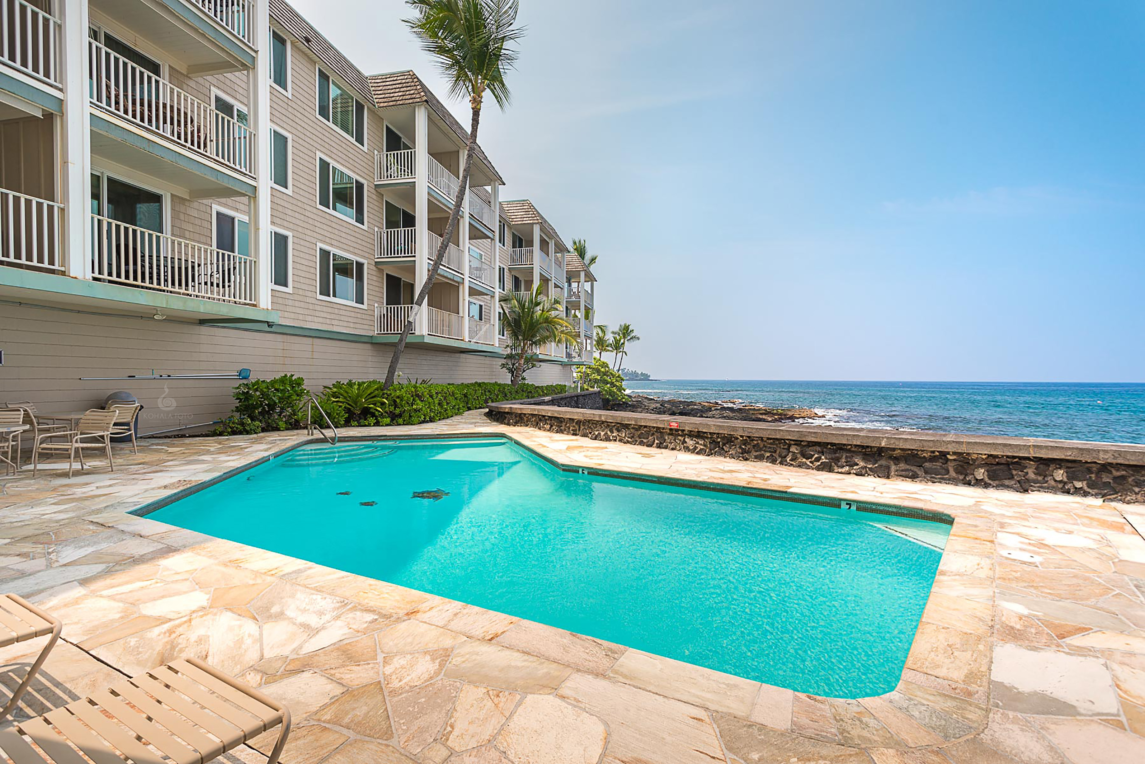Don't forget to visit our oceanfront pool!