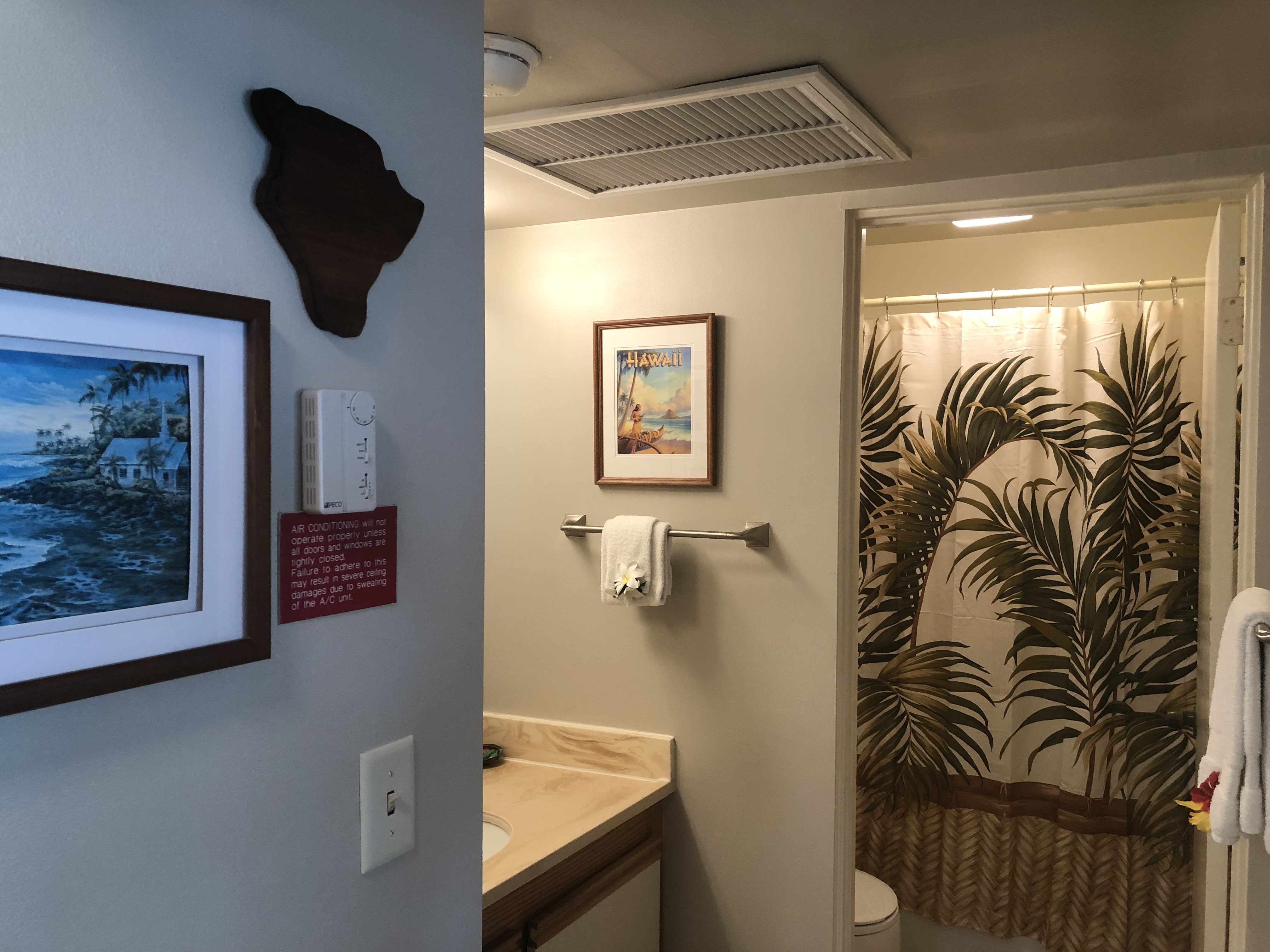 Vanity area is separate from the shower area.