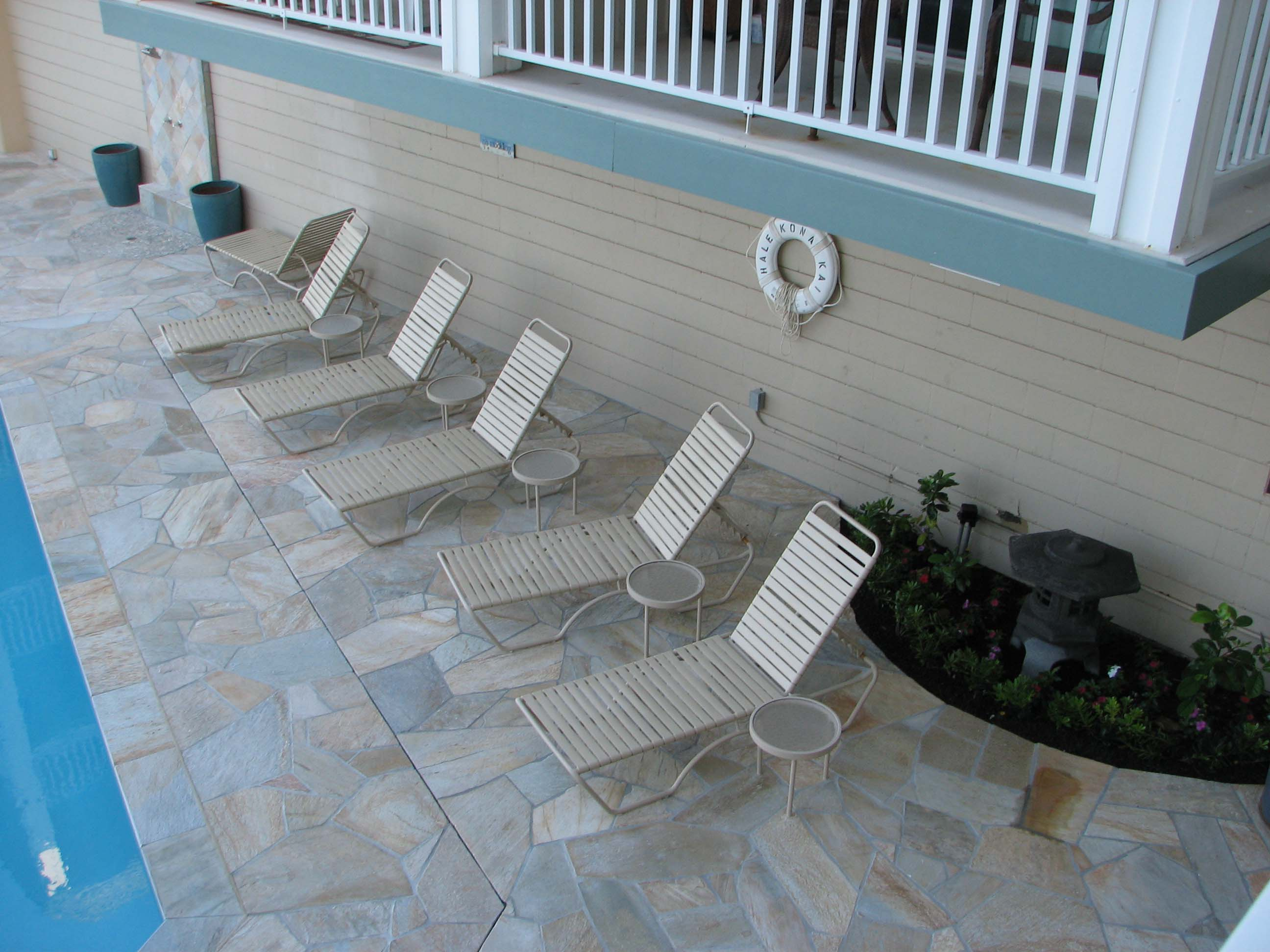 Lots of chaise lounge chairs waiting for you.. read a book or watch the whales, dolphins and turtles.