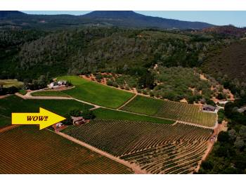 Visit the Bay Area's Tuscany!