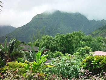 Hanalei Mountains as seen from your windows