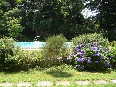 Falmouth Cape Cod vacation home with a pool!