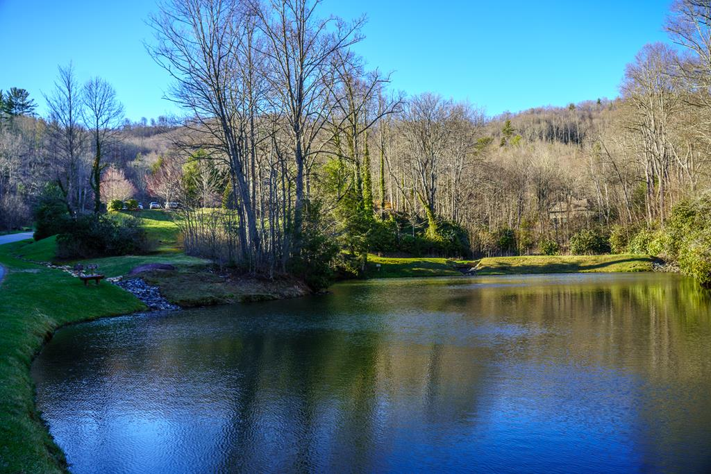 Catch and Release Fishing Ponds--- Echota