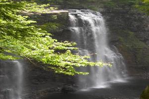 Nearby Salmon River Falls