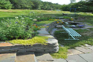The blue stone wall in the back yard