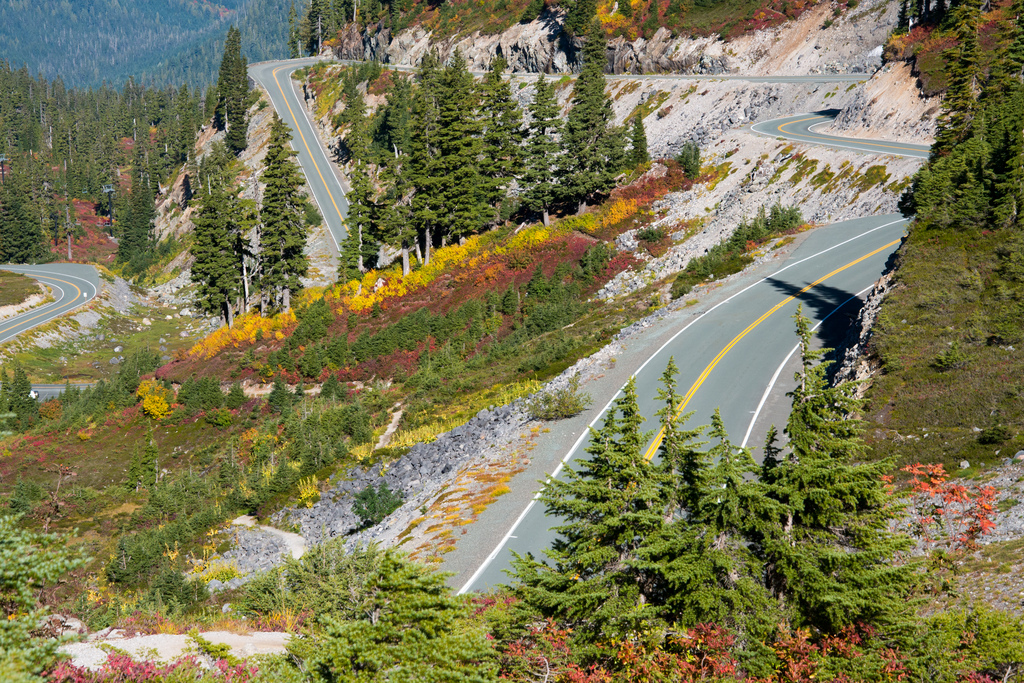 View during the spring of upper Mt.Baker Hwy.