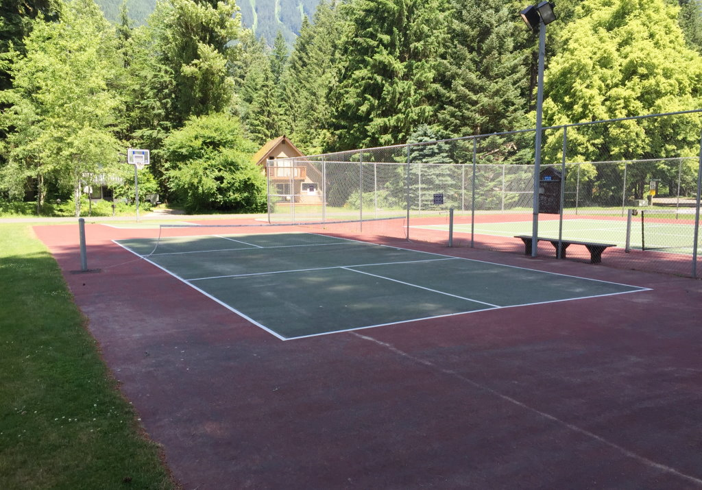 Snowline Community Court